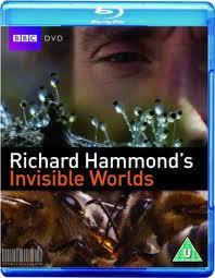 BBC Invisible World (2010)