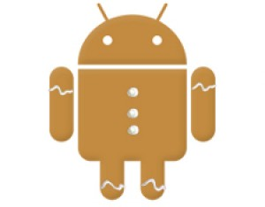 android ginggerbird