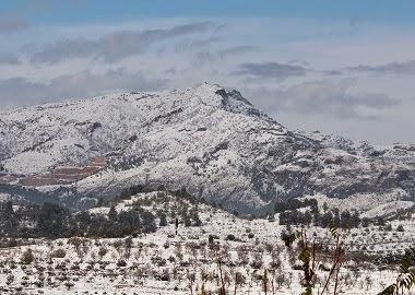 Mariola nevada. Novembre 2013