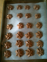 Cocoa Meringue Kisses Recipe Xylitol Review
