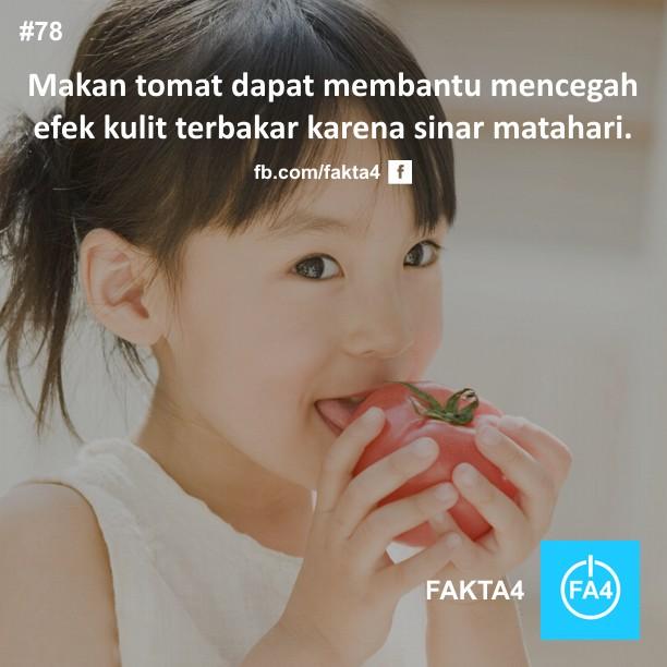 Manfaat Makan Tomat