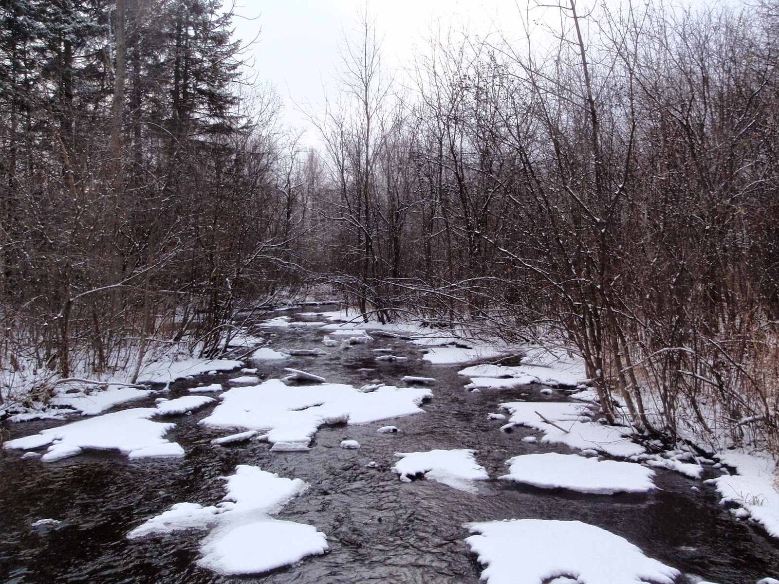 Ice Age Trail - Northern Kettle Moraine State Forest