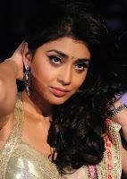 Shriya, Saran, In, a, Designer, Saree