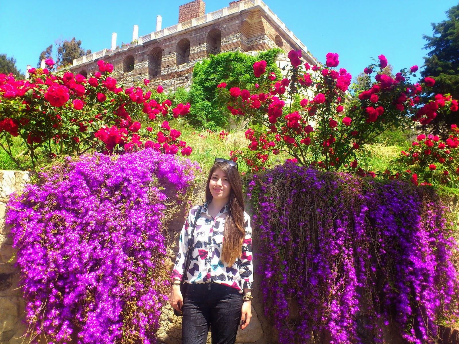 Kuşadası-Efes Antik Kenti-Şirince