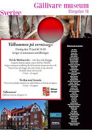 Gällivare Museum (Suecia)