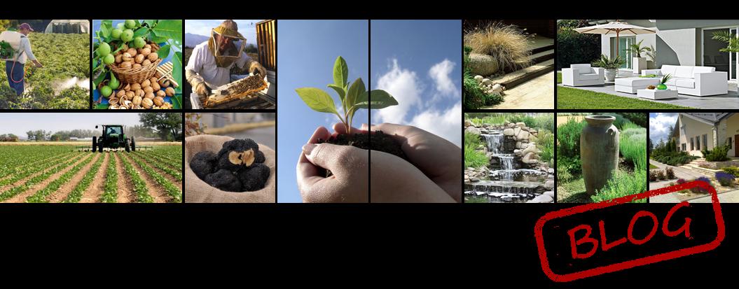 Öntözőrendszerek, Agrár szaktanácsadás, Kertépítészet, Kerttervezés, Kertépítés