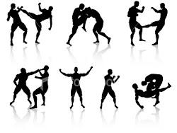 Martial Art Schools That I Like