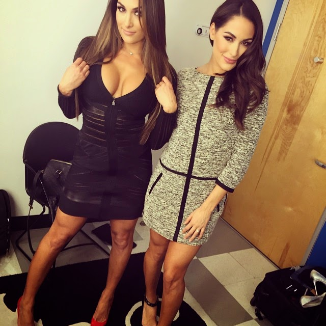 Nikki and Brie Bella Doing Media for Total Divas.