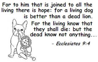 Ecclesiastes 9:4