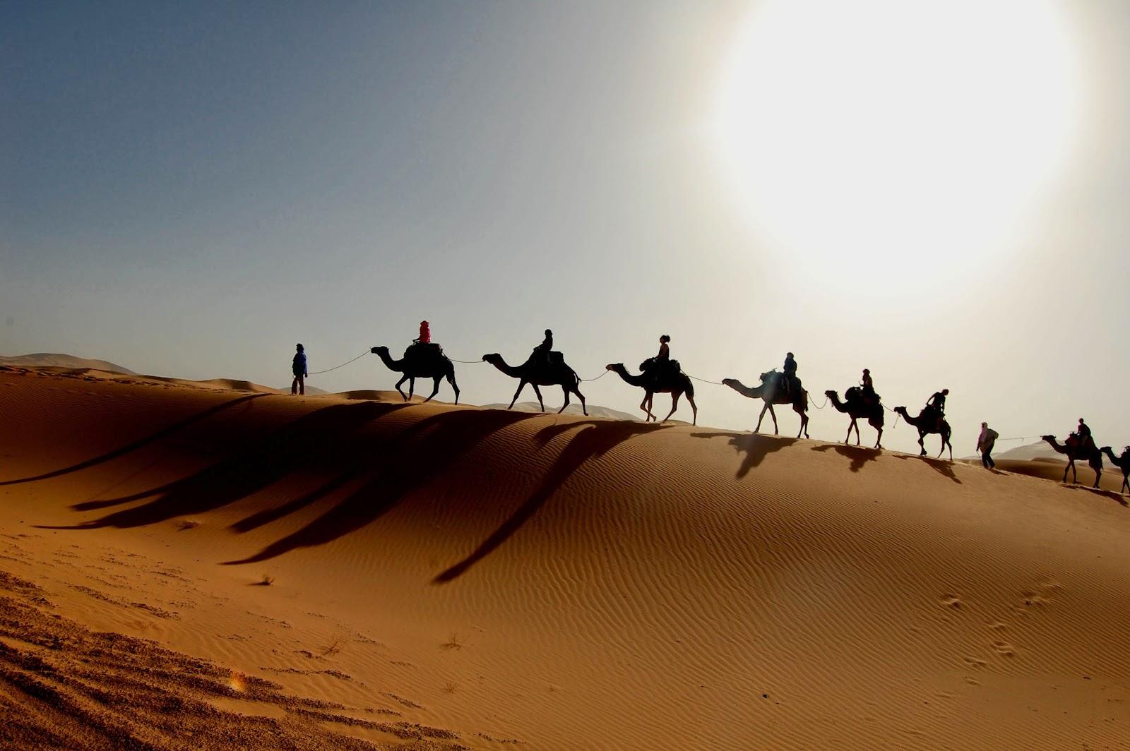 Contourner la censure de réseau marocain