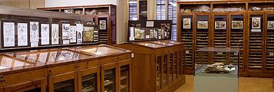 Museu Geològic del Seminari