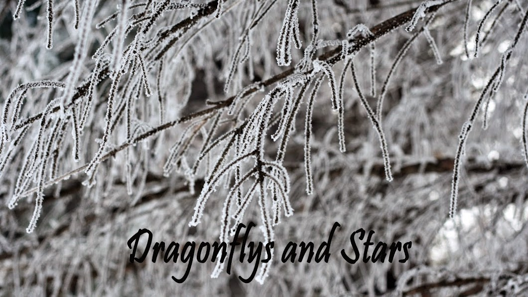 Dragonflys and Stars