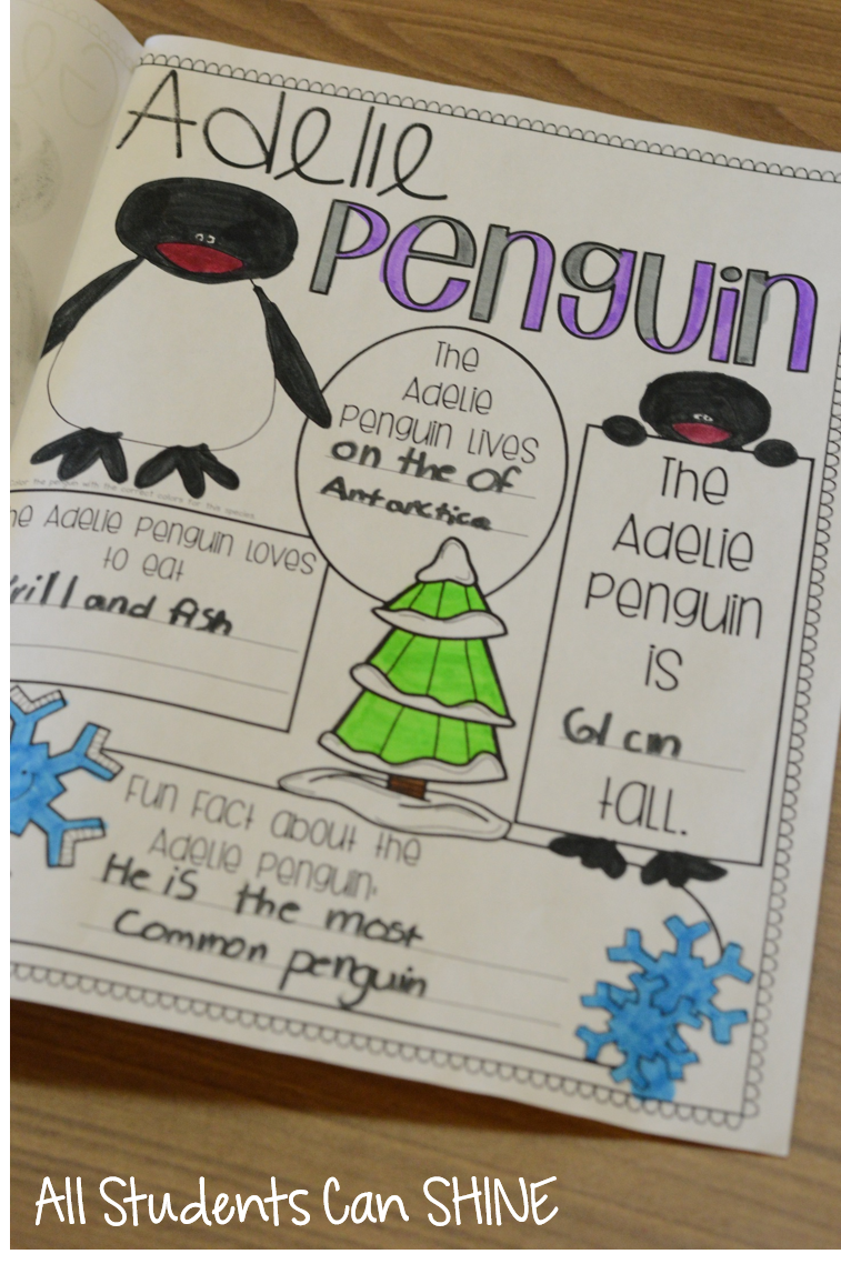 penguins and polar bears all students can shine