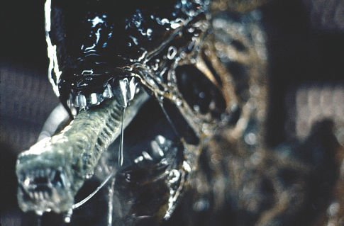 Alien Movie Alien thrilled me because it