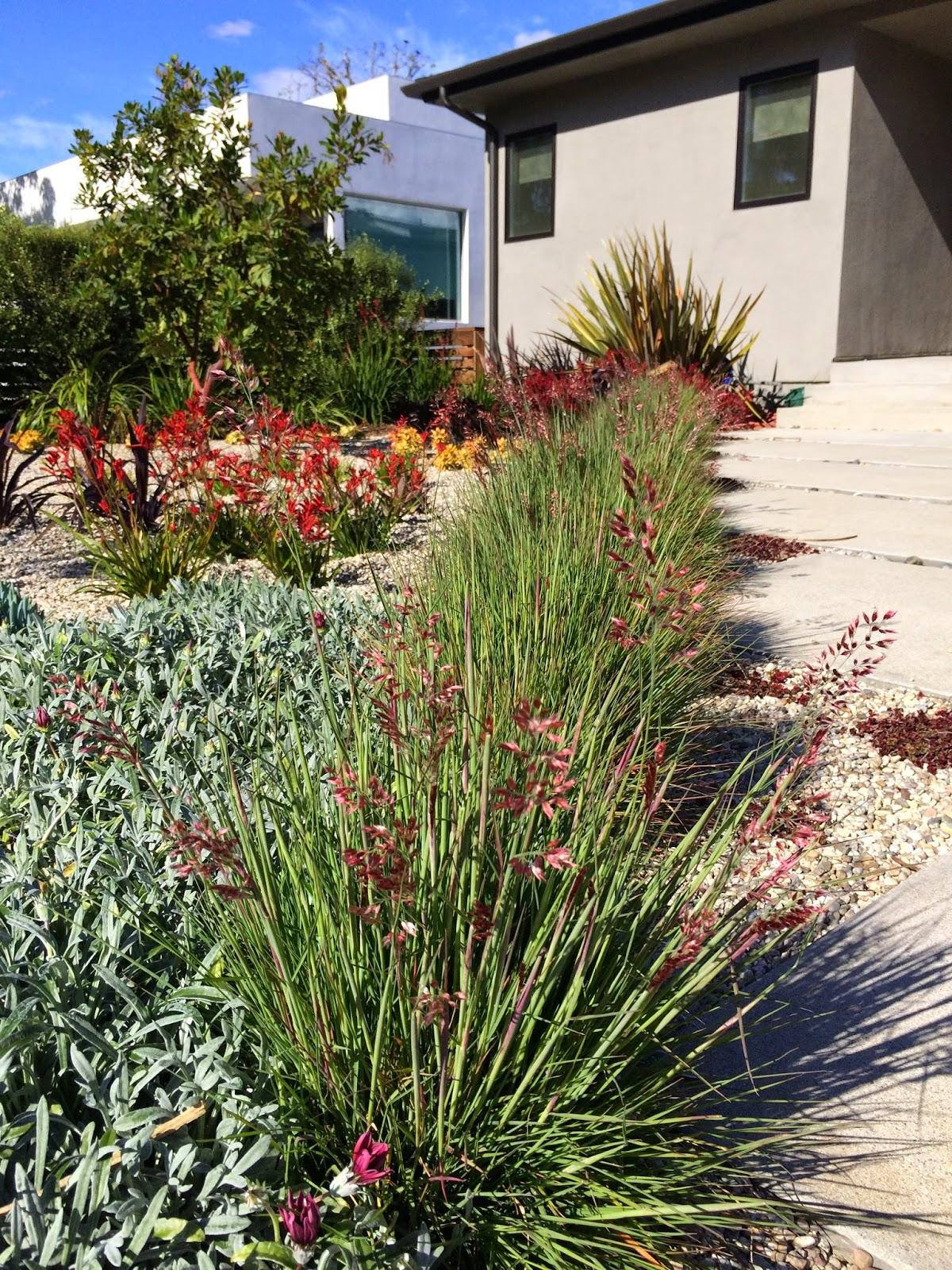 2018 Mar Vista Green Garden Showcase: 3554 Mountain View Avenue ...