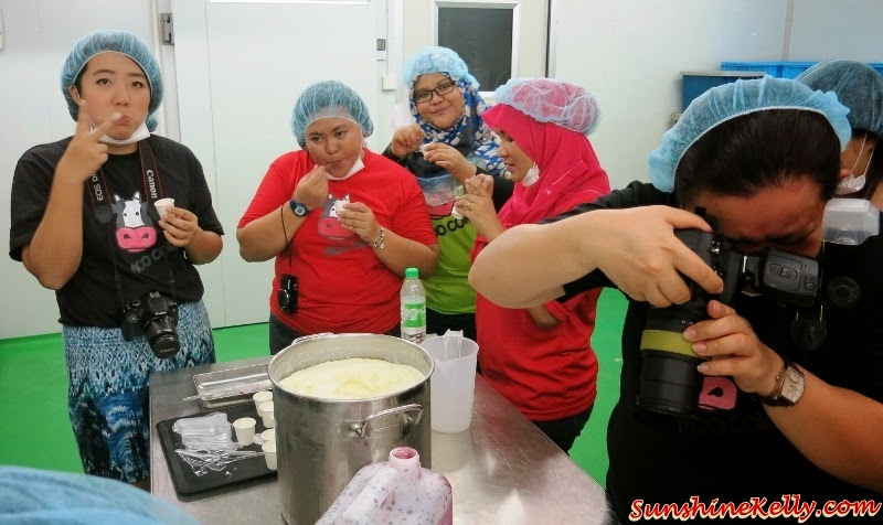 How To Make Yogurt, Moo Cow Factory Visit, Moo Cow, Frozen Yogurt, Yogurt Cheese Cake, Moo Cow Mooncake, Factory Visit, The Butterfly Project Malaysia, Yogurt drink, yogurt