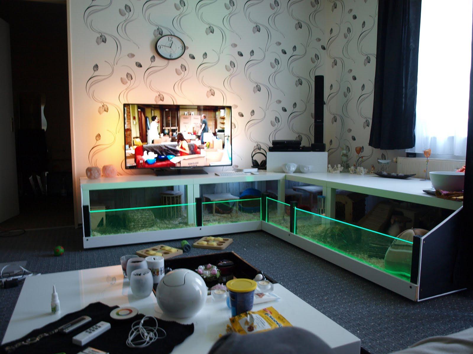 Accessori economici, ma con stile? Mobili IKEA modificati! - Pets Life