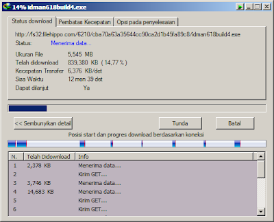 Internet Download Manager 6.18 Build 4 | Free IDM Update terbaru 2013