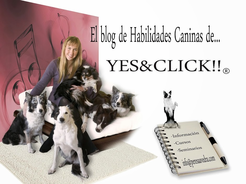 ¡Yes&Click! HechiAsia