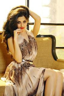 Hot South Indian Actress Vedika