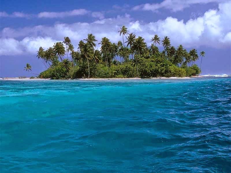 Cerita Novel Online -  Pulau