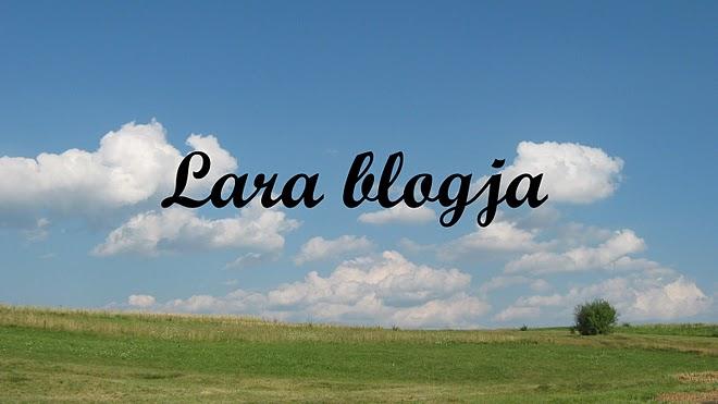 Lara blogja