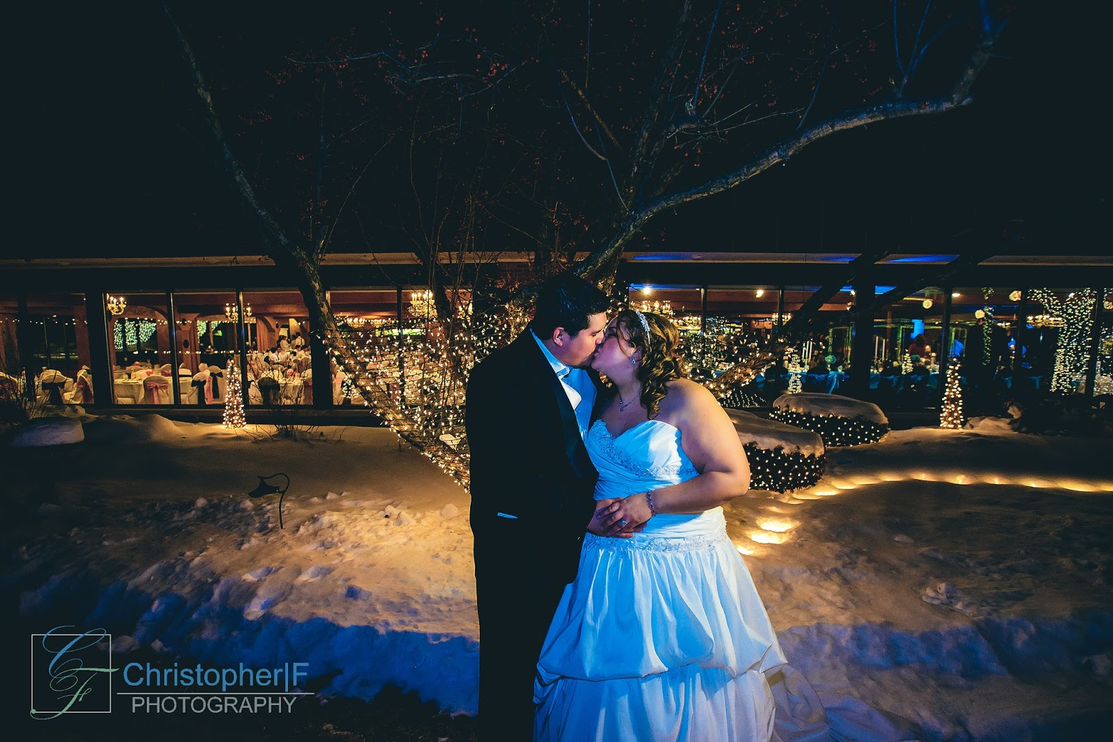 Night Wedding Photograph Chicago