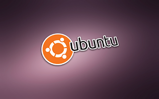 Le migliore alternative a Flash Player su Ubuntu