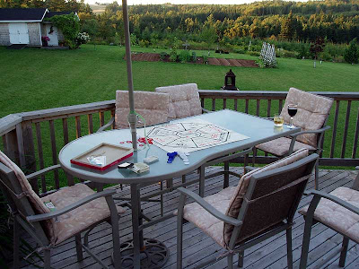We've played lots of Rummoli this summer but this was the perfect evening to play outside.