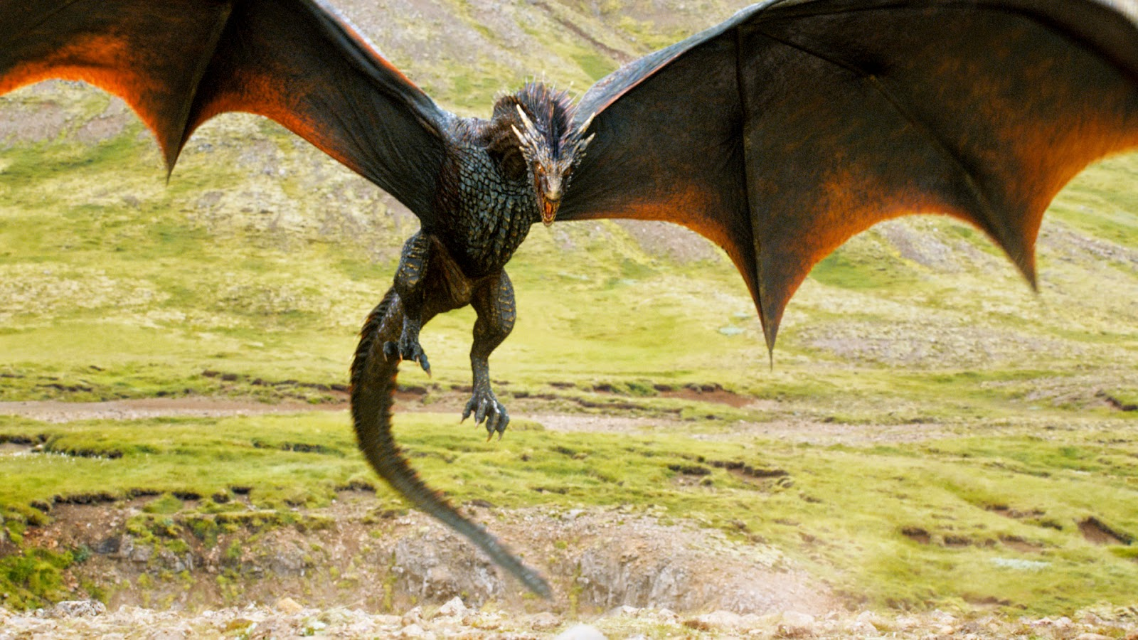 Dragões: Mitos ou Verdade?