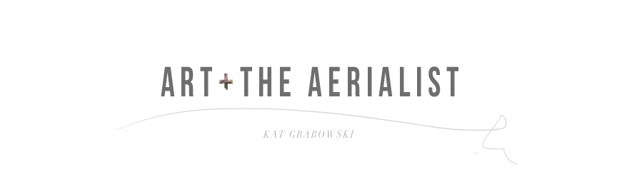 Art & The Aerialist