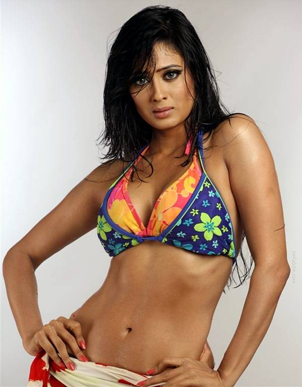 bollybreak spicy shweta tiwari hot bikini wallpapers