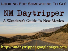 NM Daytripper