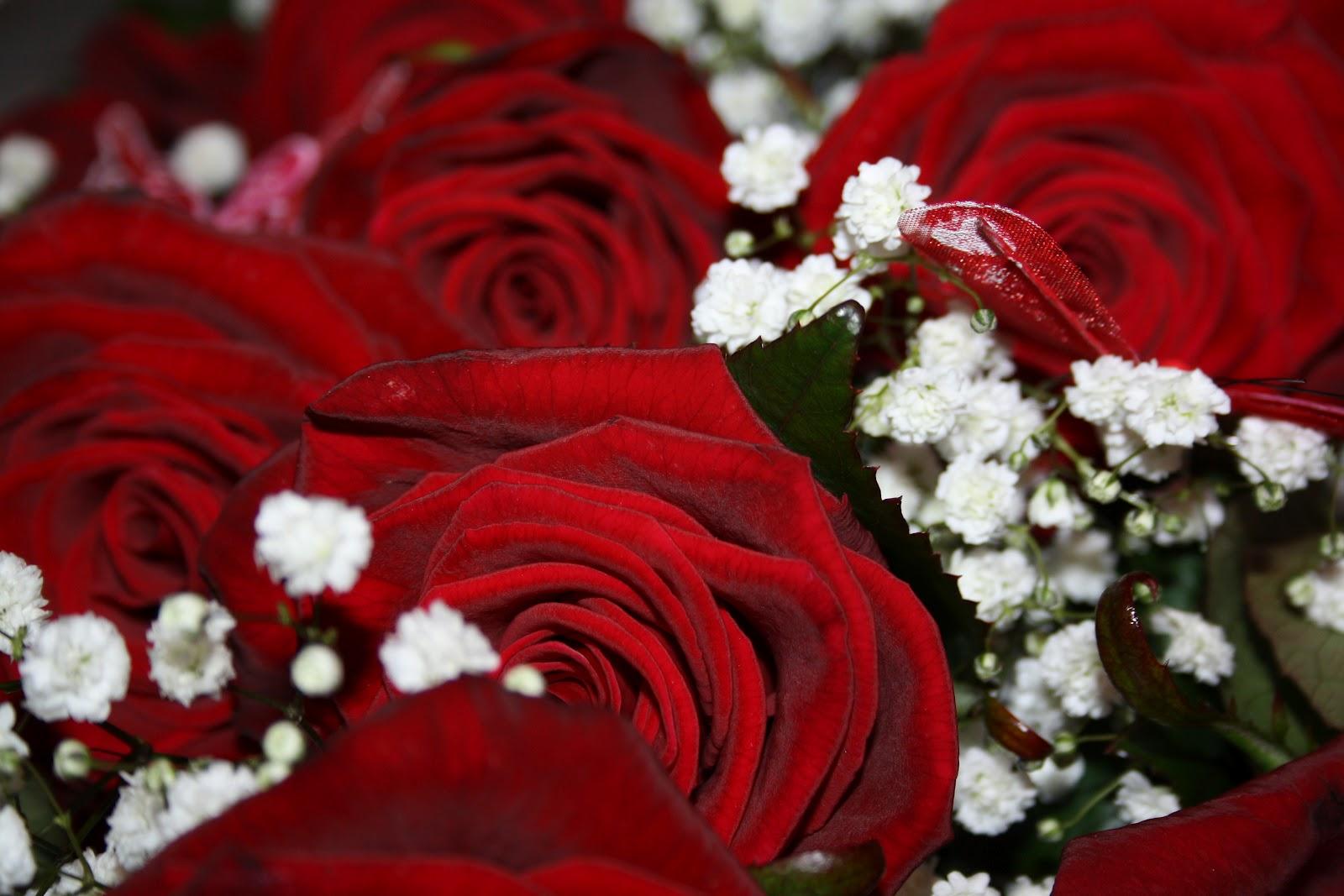 Matrimonio Tema Rose Rosse : Oltre l obiettivo matrimonio in rosso