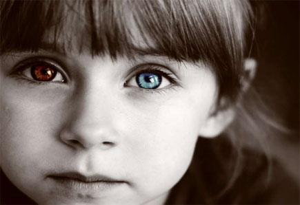 Scholarships For Blue Eyes And Brown Hair | Dark Brown Hairs