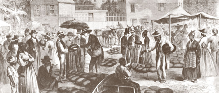 the plight of african american slaves in 19th century america Colonial williamsburg - experience life in the 18th century at america's largest outdoor  the majority, but not all, of these african americans were slaves in fact .