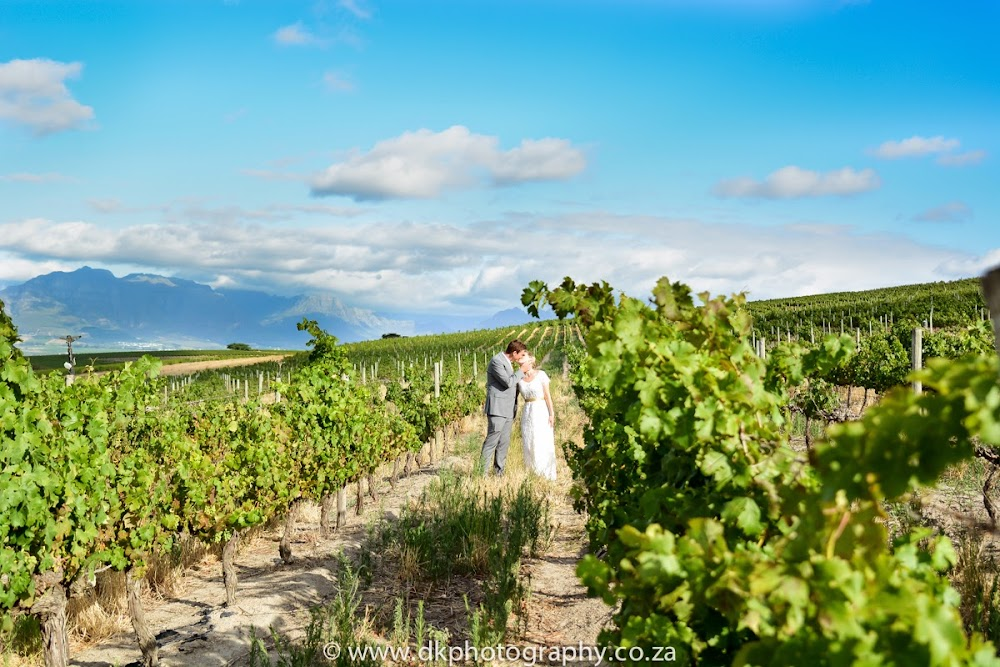 DK Photography DSC_5457 Susan & Gerald's Wedding in Jordan Wine Estate, Stellenbosch  Cape Town Wedding photographer