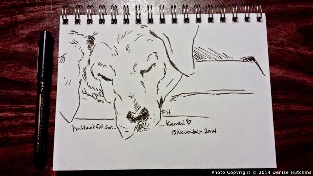Ink Sketch of Sleeping Hound-Mix