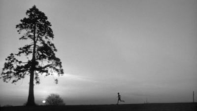 Одиночество бегуна на длинные дистанции