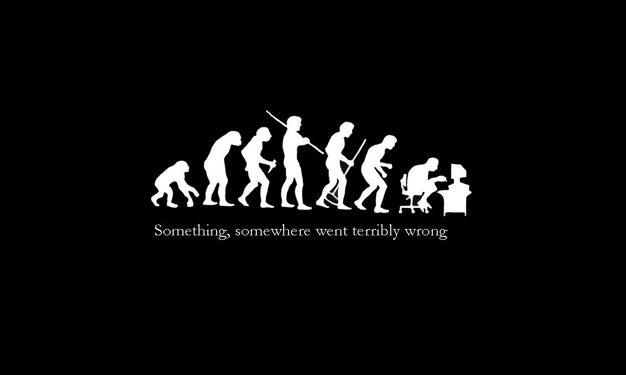 Hd Funny Wallpaper Human Evolution