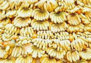 ampar ampar pisang