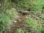Bron foto omslag: Belleterbeek bron (OBRON0513) (foto: Monique Korsten, Waterschap Roer en Overmaas)