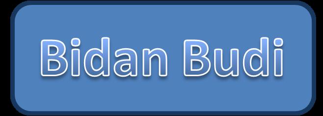 Bidan Budi