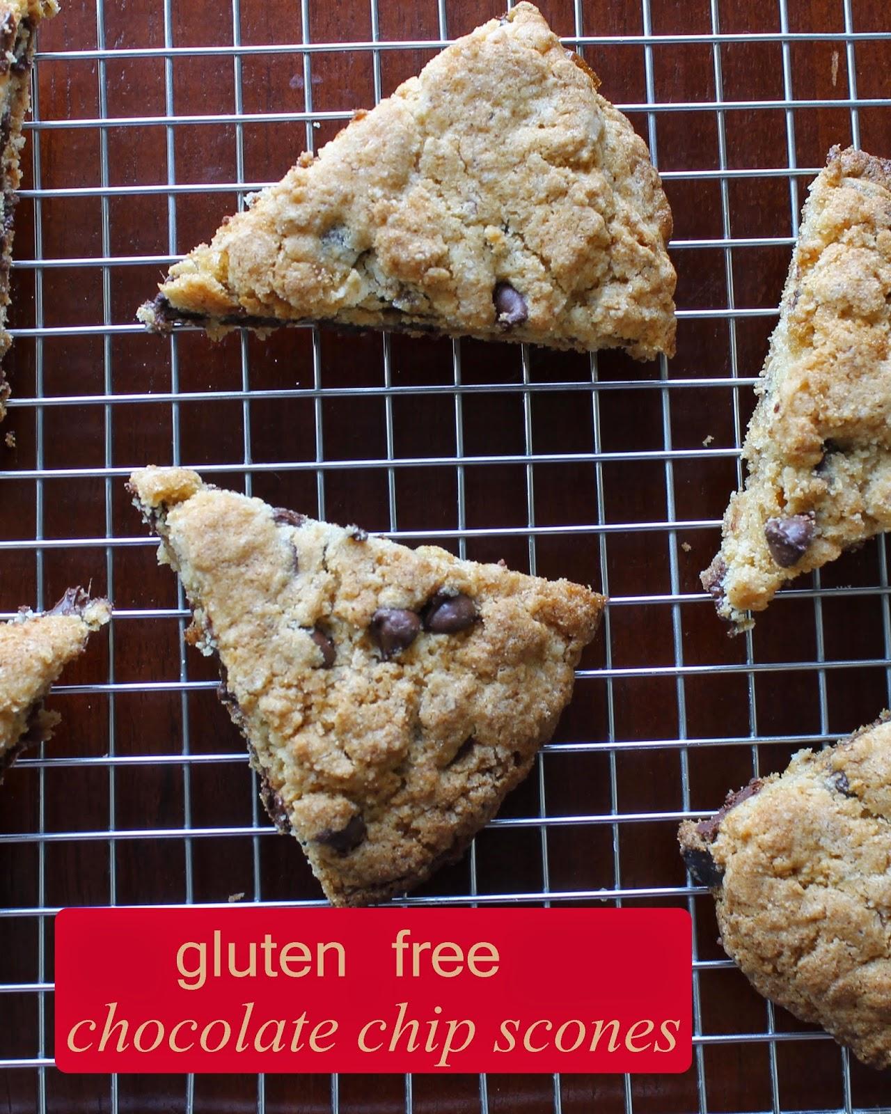 Gluten-Free Chocolate Chip Scones Recipe — Dishmaps