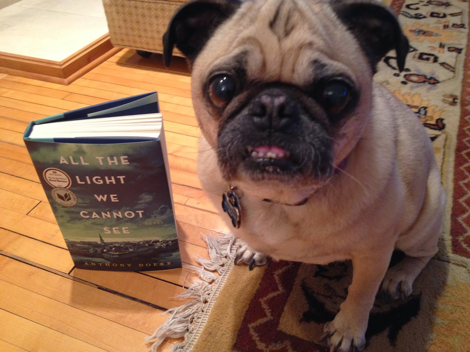 Stageoflife Book Blog All the Light We Cannot See Amazing