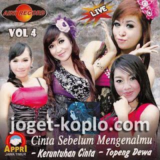 Airlangga Vol 4 2013