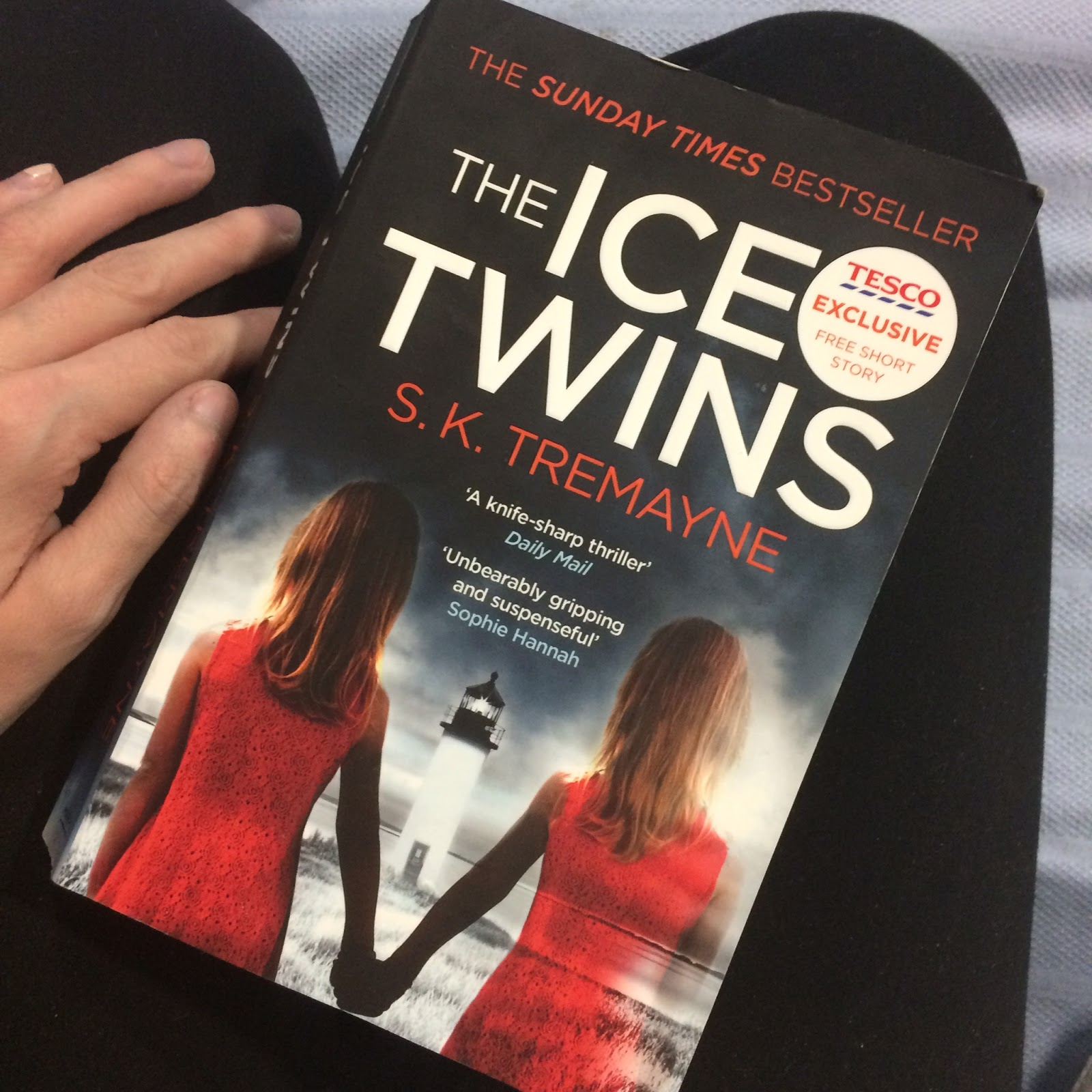The Ice Twins review