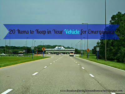 20 Items to Keep in Your Vehicle for Emergencies