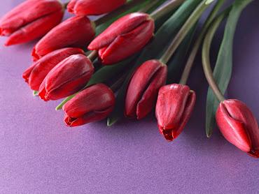 #2 Delightful Flowers Art