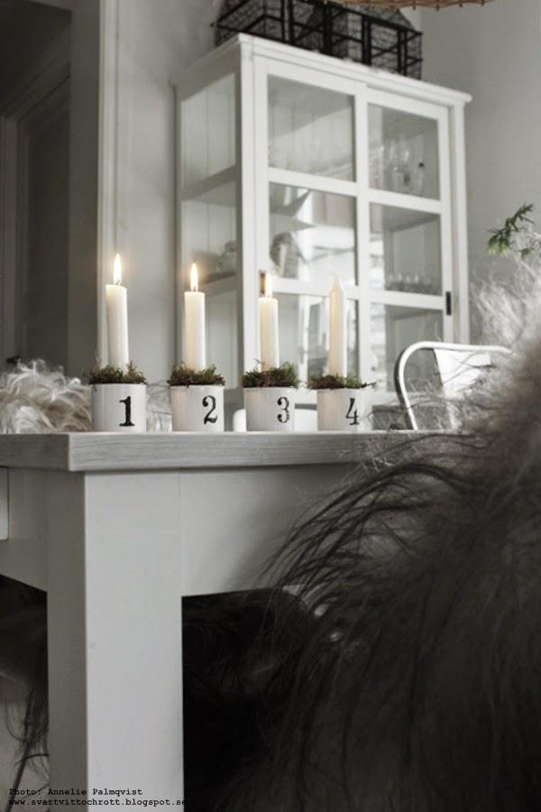 advent, tredje ljuset är tänt, matbord, vitt, svartvita, numrerade adventskoppar, fårskinn, isländska fårskinn, långhåriga skinn på stolar, inredning, inredningsblogg, blogg, bloggar, julen 2014